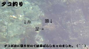 Dscn0894_1